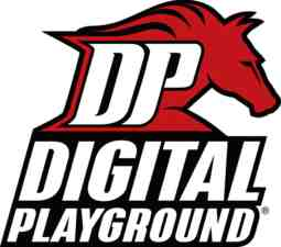 digital playground logo
